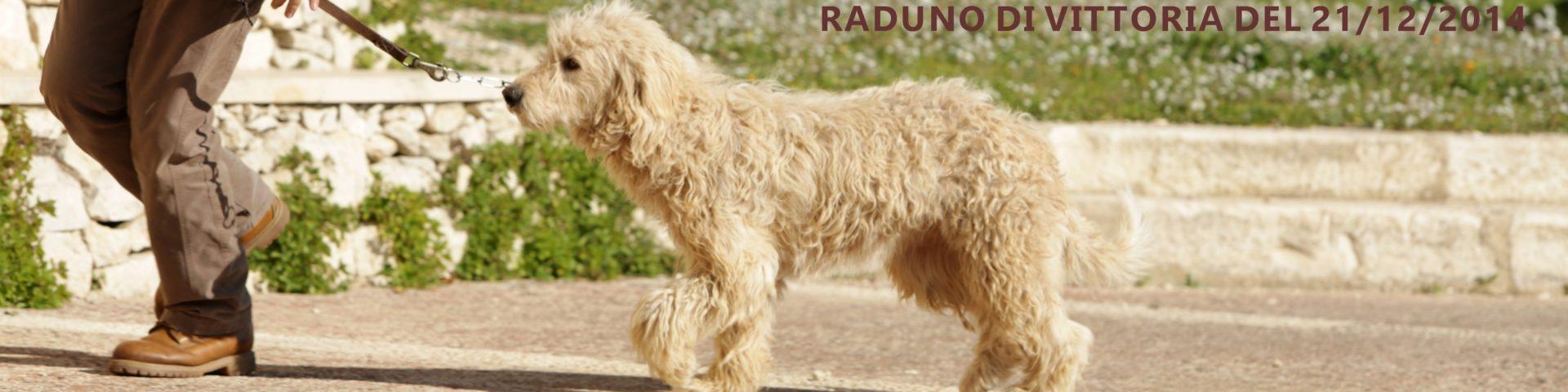 raduno_2014