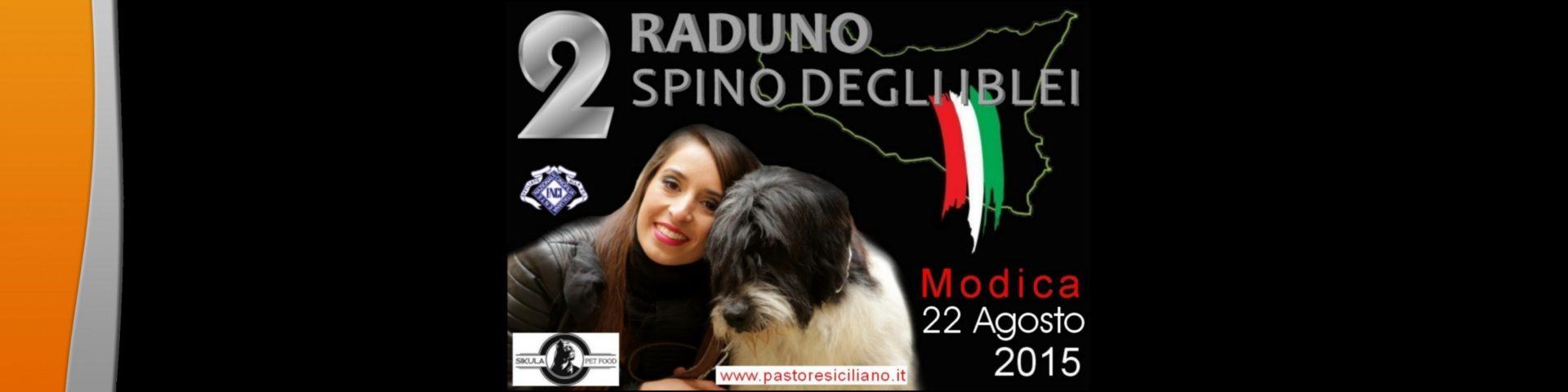raduno_2015