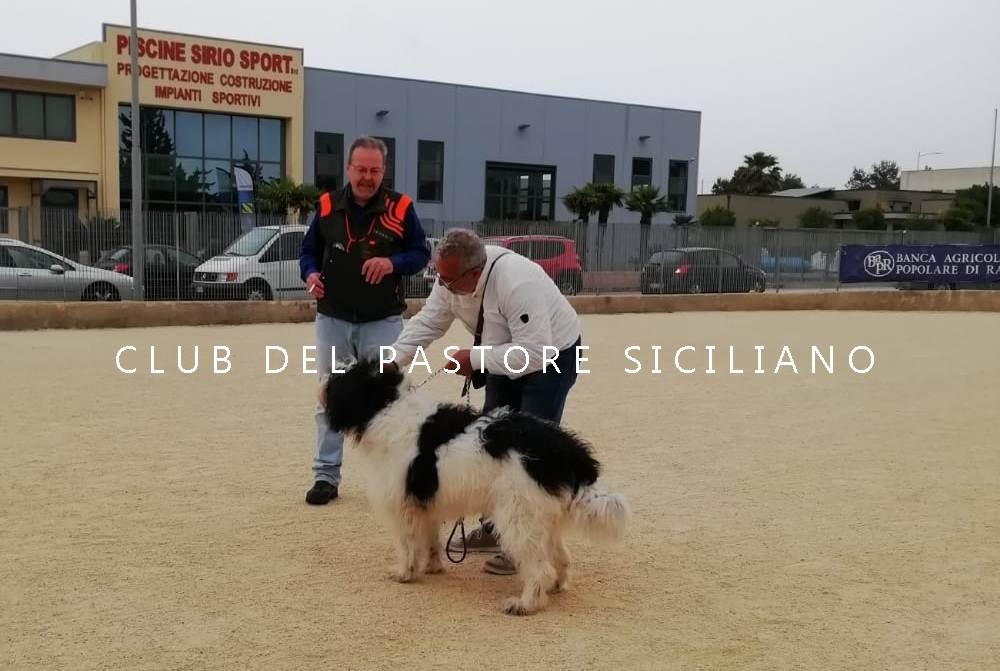 GIANNI_VULLO_4