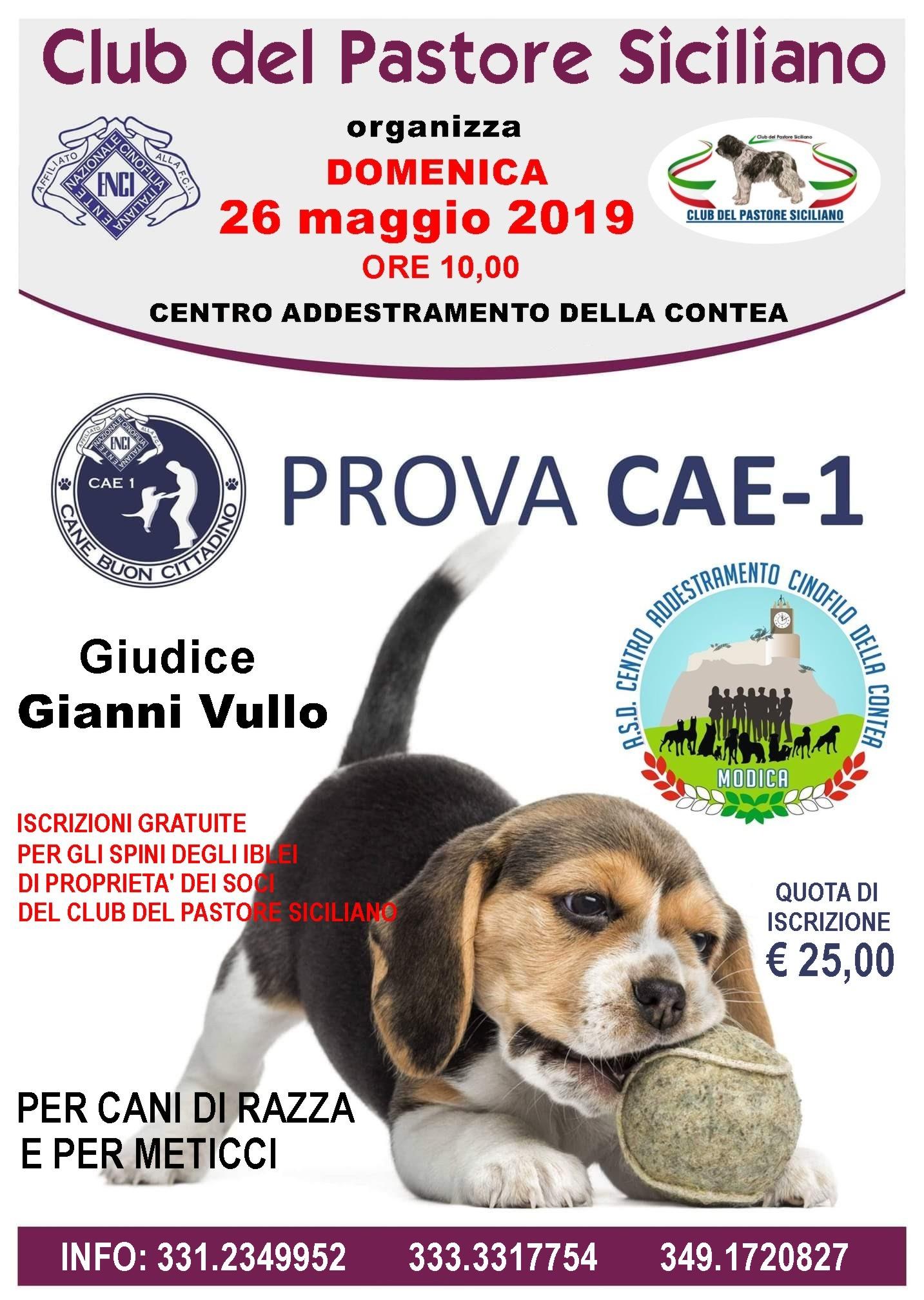 locandina Maggio 2019