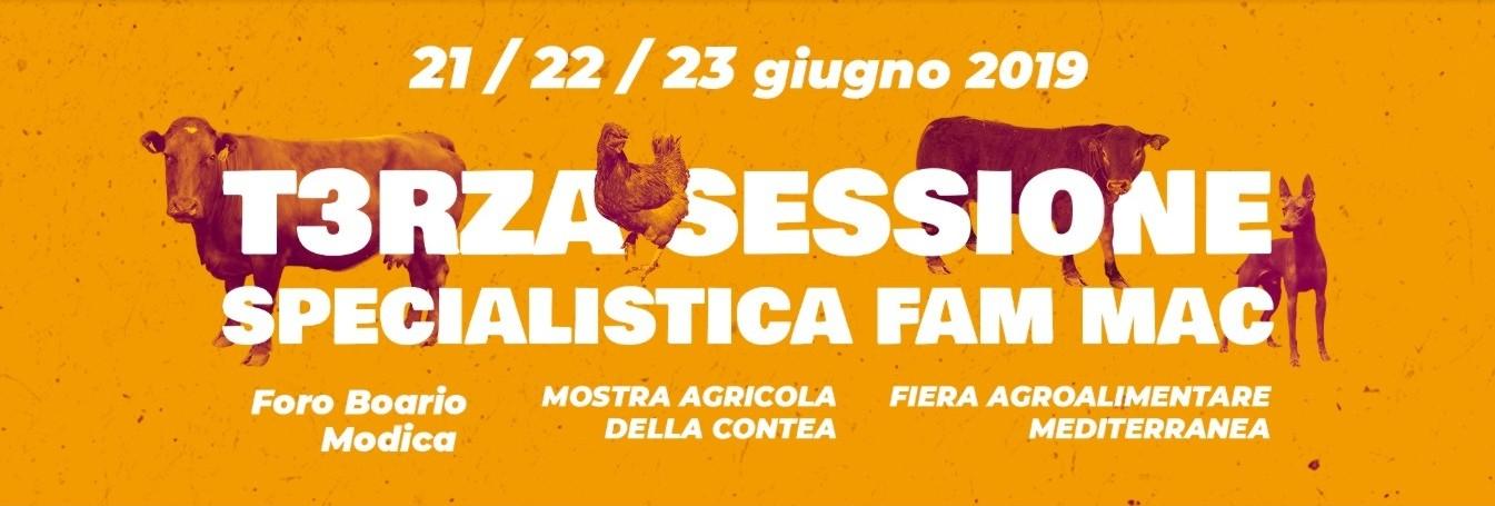 logo Club del Pastore Siciliano - Copia (2)