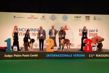 winner025