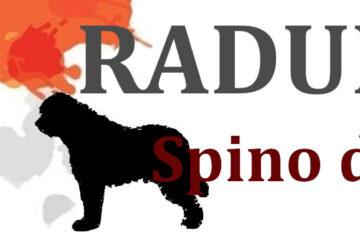 RADUNO_image